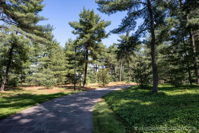 LBJ Memorial Grove Washington DC Walkway Through the Trees