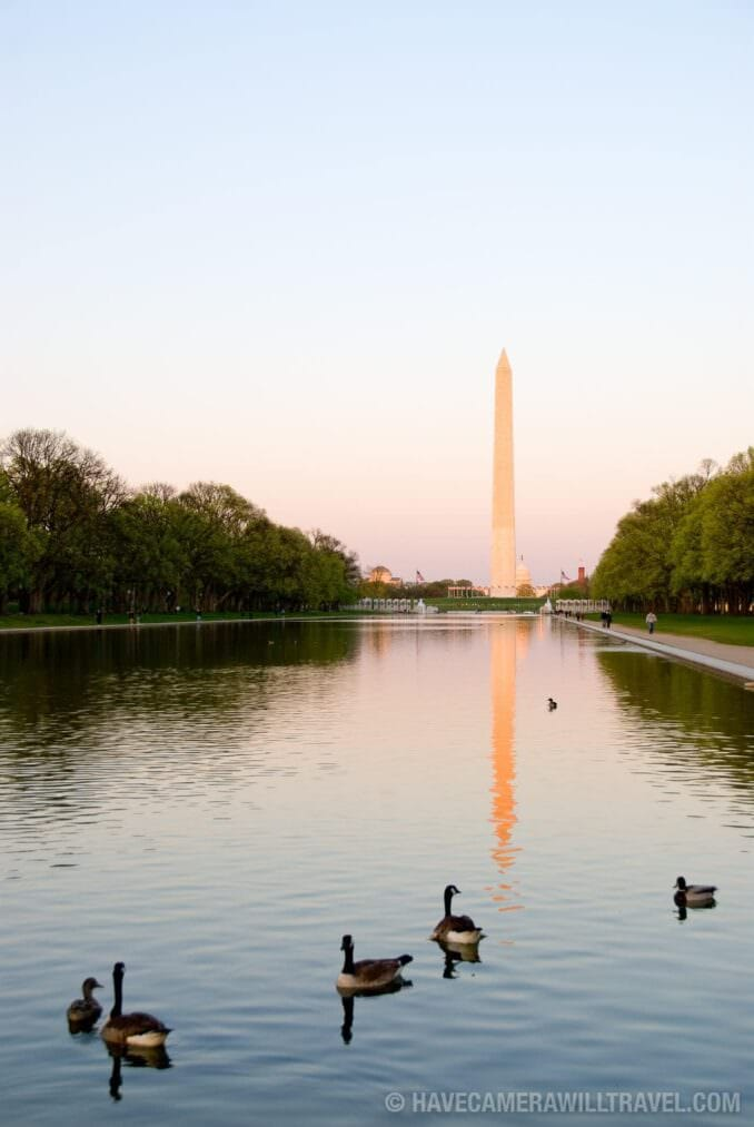 Reflecting Pool in Late Afternoon with Ducks
