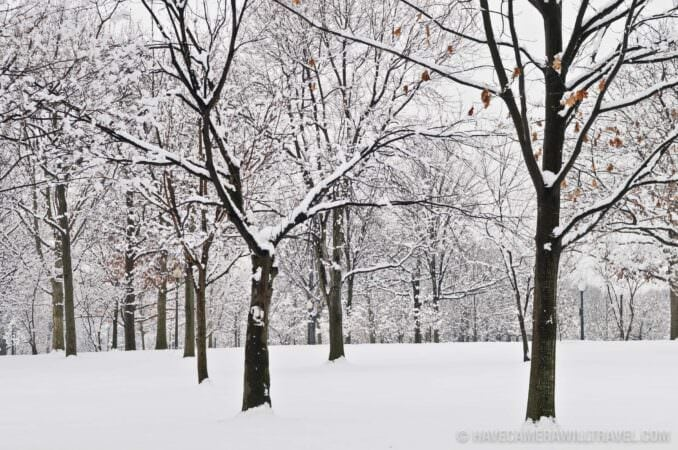 Snow in Constitution Gardens Washington DC