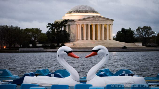 Swan Paddle Boats with Jefferson Memorial