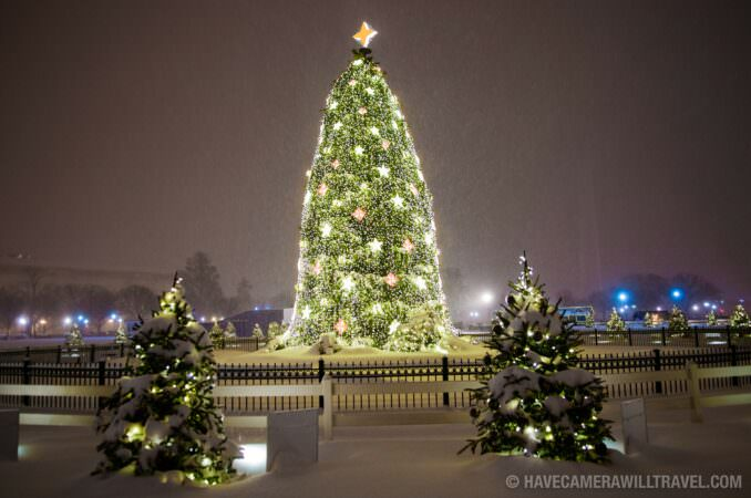White House Christmas tree at night