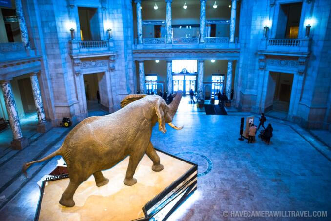 When Was The Natural History Museum In Dc Built